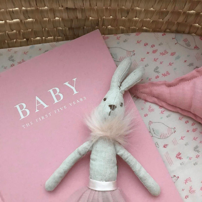 babys record book your first five years baby record book